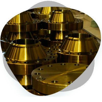 Cupro Nickel Flanges Products