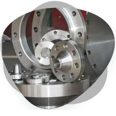 SMO 254 Flanges Products